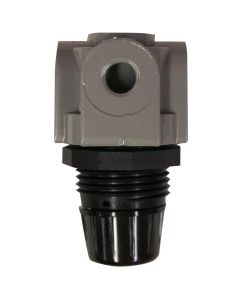 "1/4"" NPT Mini Heavy Duty Regulator"
